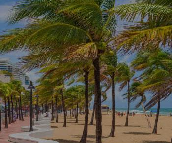 Office in Fort Lauderdale, FL